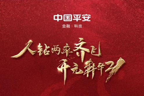 云南平安2021年开 门红大会